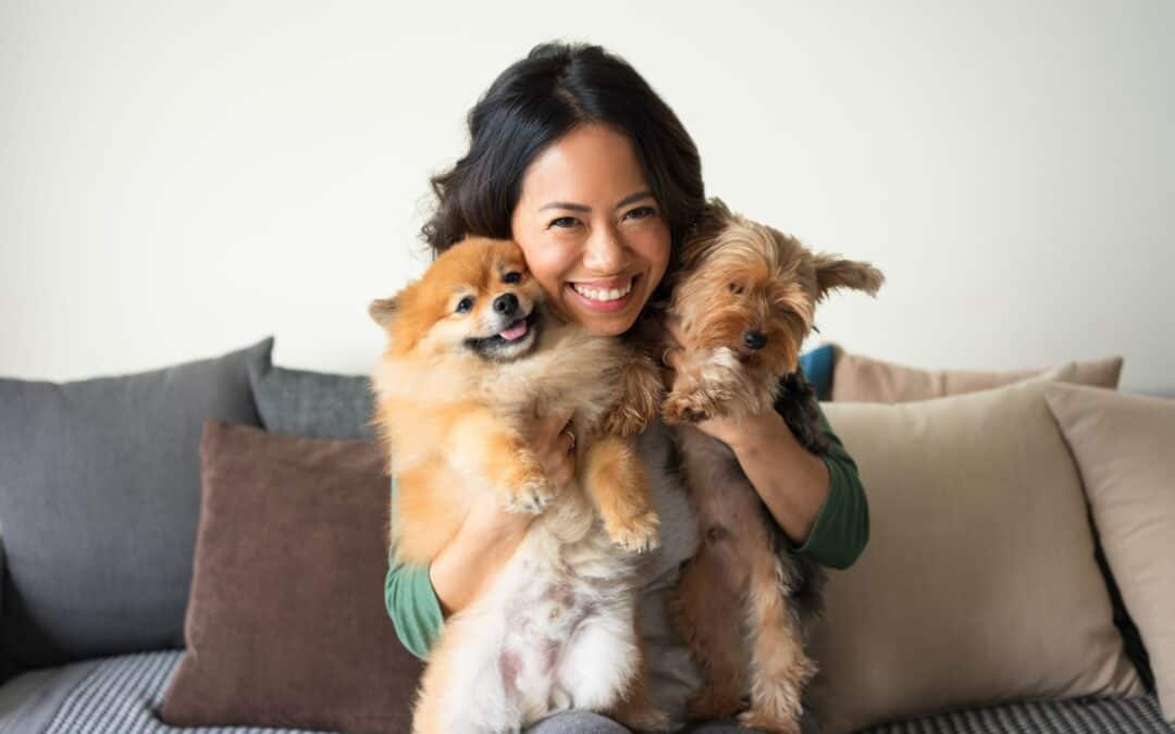 Five Important HVAC Tips for Pet Owners